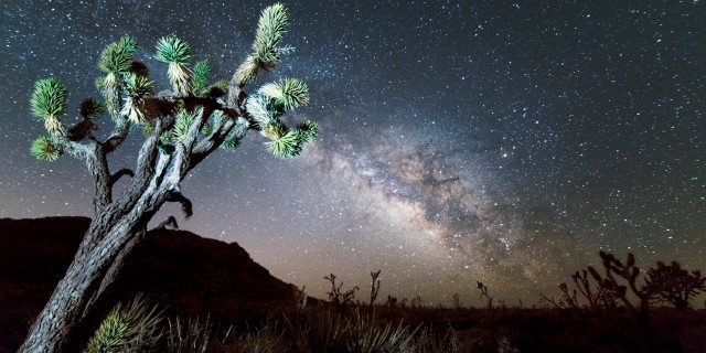 Mojave National Preserve Milky Way Time-Lapse